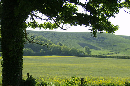 southerly-view-from-firle-room-may2008